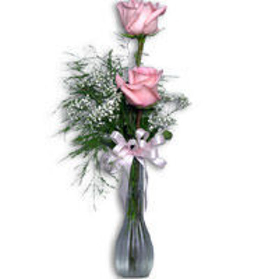 Picture of 2 roses in a vase