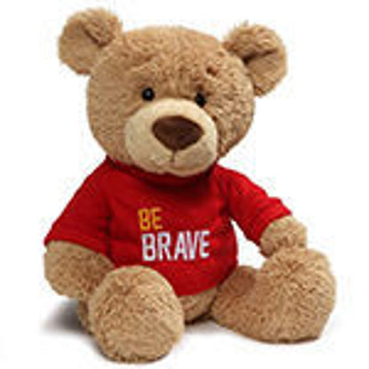 Picture of Be Brave Bear