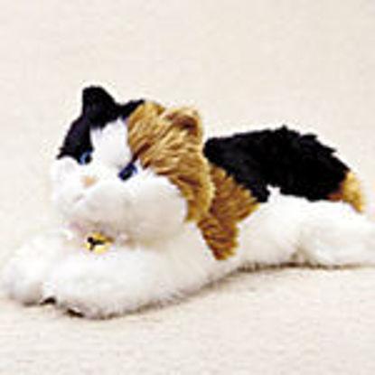 Picture of Esmeralda Calico Cat