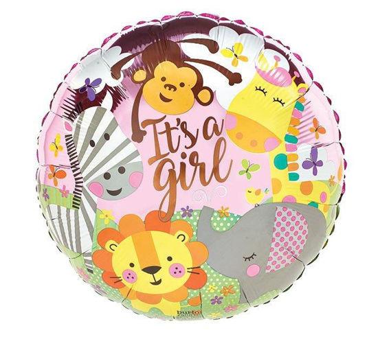 Baby girl zoo