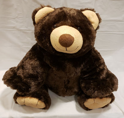 Picture of Teddy Bear  ( Color Varies )